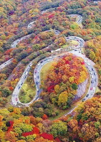 پارک جنگلی نیکو در ژاپن