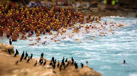 تصاویر فوق العاده از National Geographic 2011 (12)