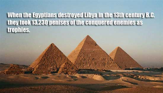Egypt-Cairo-Giza-the-Pyramids-1-BG-copy