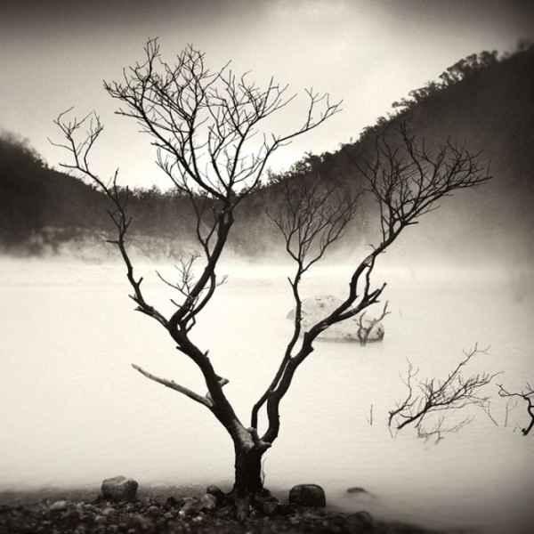 تصاویر سیاه و سفید شگفت آور (11)