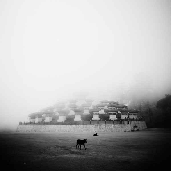 تصاویر سیاه و سفید شگفت آور (4)