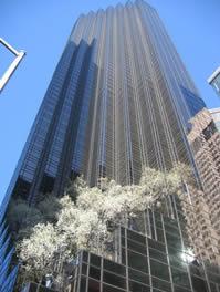 سطوح خود تمیز شونده برای ساختمان های بزرگ بسیار مفید است.