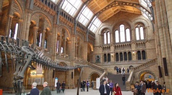موزه تاریخ طبیعی لندن (Natural History Museum of London)