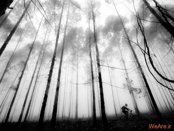تصاویر سیاه و سفید خارق العاده از نشنال جئوگرافیک (4)