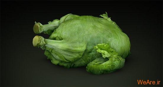 تصاویر خلاقانه، مرغ سبز