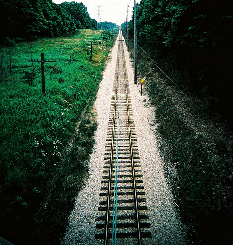 Railroad weeds by Kevin Dooley