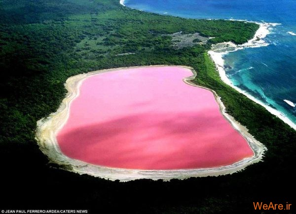دریاچه صورتی (1)