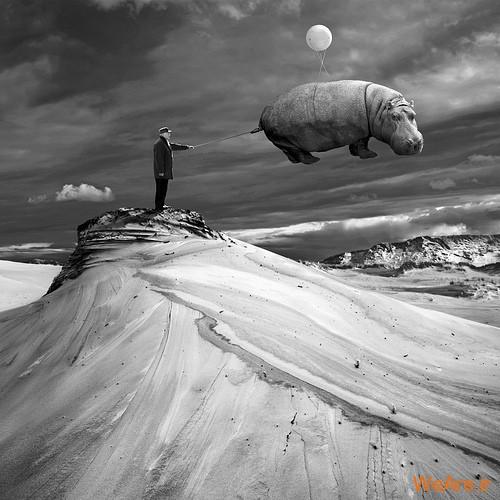 تصاویر سورئال,surreal (14)