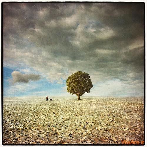 تصاویر سورئال,surreal (6)
