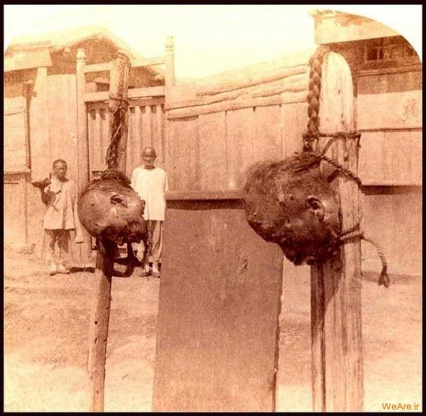 شکنجه و اعدام (1)