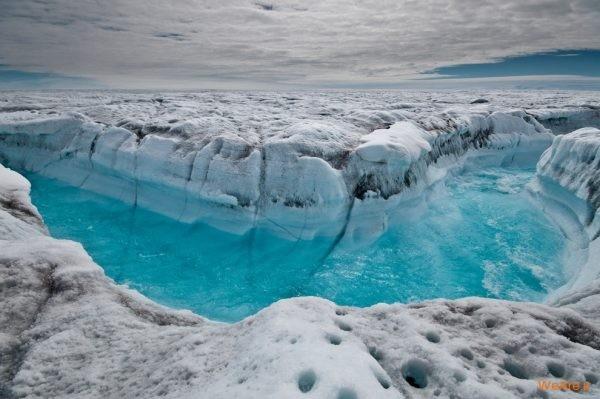 تصاویر برگزیده از طبیعت (2012) (32)