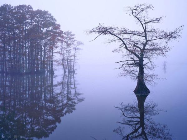 انعکاس عکس در آب, انعکاس تصویر در آب (4)