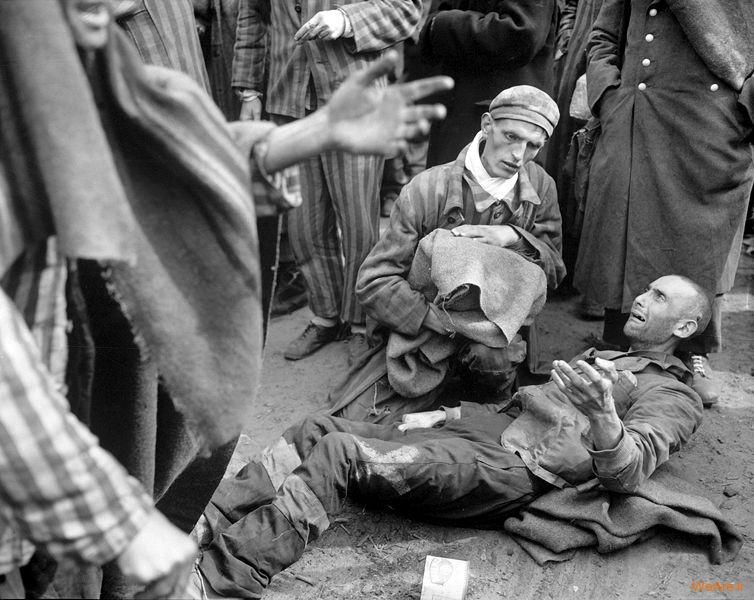 تصاویر تلفات جنگ جهانی دوم (2)