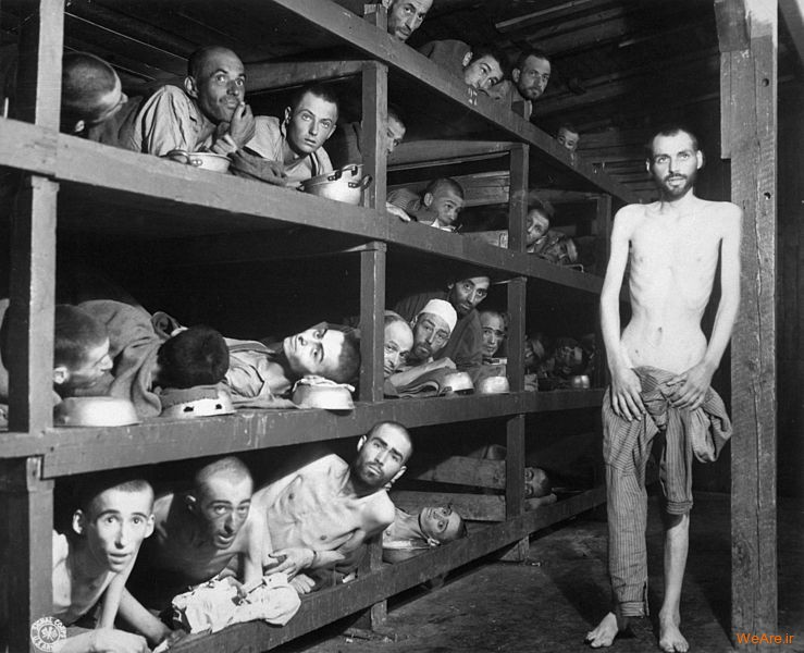 تصاویر تلفات جنگ جهانی دوم (3)