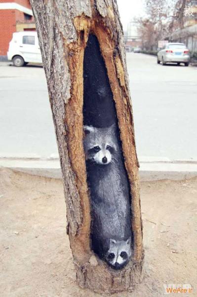 نقاشی روی درخت (11)