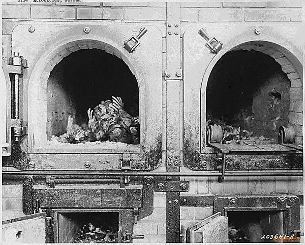 تصاویر تلفات جنگ جهانی دوم (6)