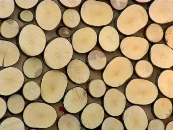 چوب برش خوده