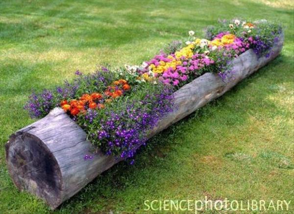 ایده های خلاقانه باغداری (12)