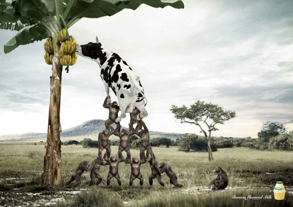 شیر با طعم موز، تبلیغ شیرموز
