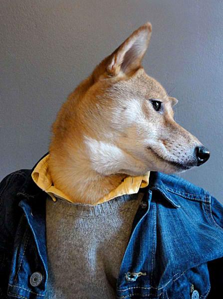 سگی با لباس مردانه (10)