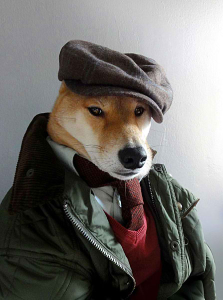 سگی با لباس مردانه (9)