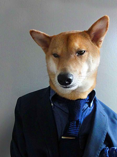 سگی با لباس مردانه (5)