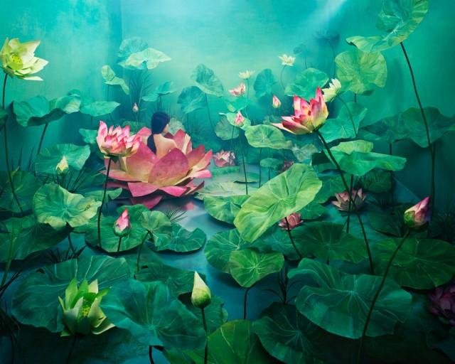 عکاسی از رویا (4)