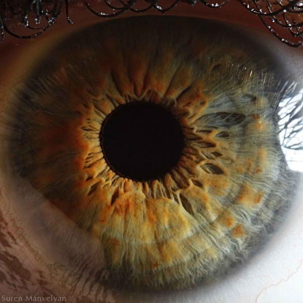 نمای نزدیک چشم انسان (1)