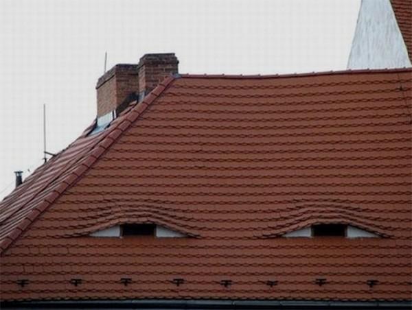 صورت های مخفی در محیط اطراف (4)