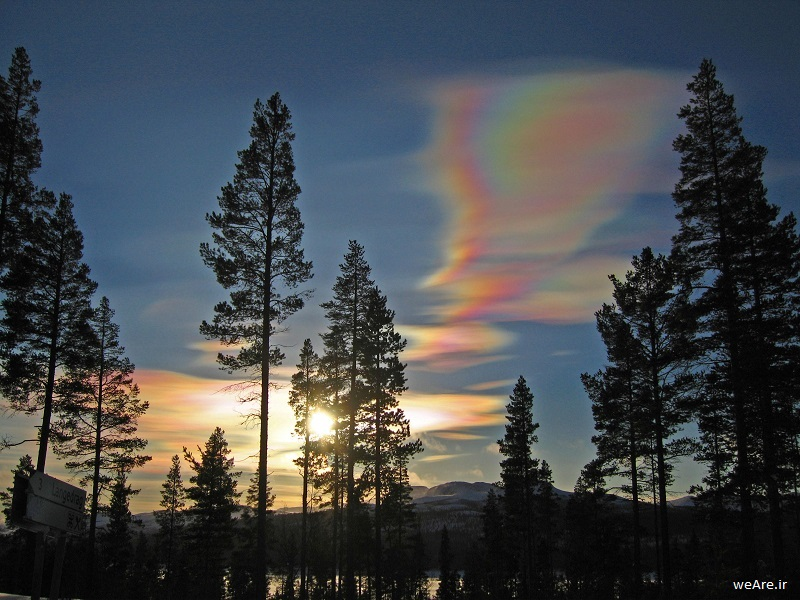 cloud-formations-nacreous-clouds-over-forest