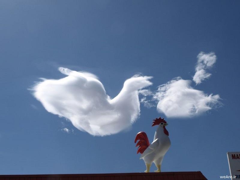 "Wolkenbilder / ""Clouds that look like things"" / Verlag Hodder - Sceptre"