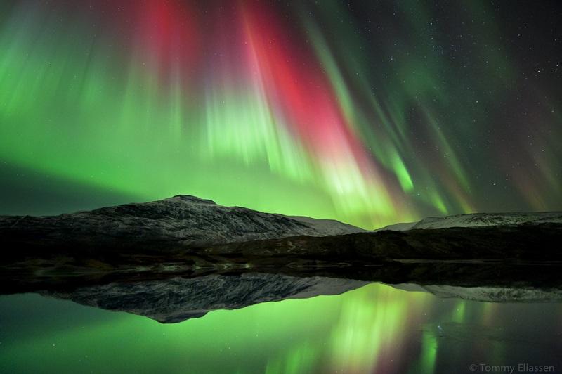 northern-lights-Tommy-Eliassen
