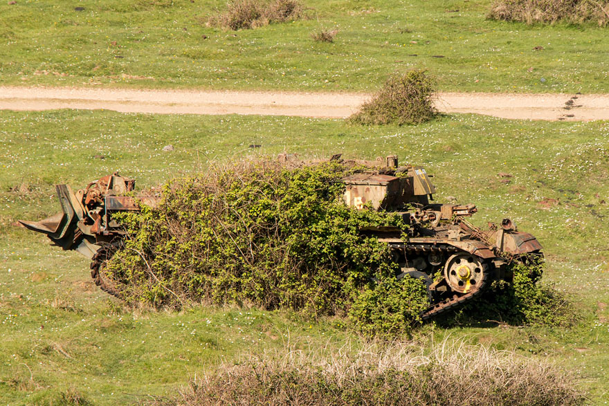 tanks-taken-over-by-nature-64__880