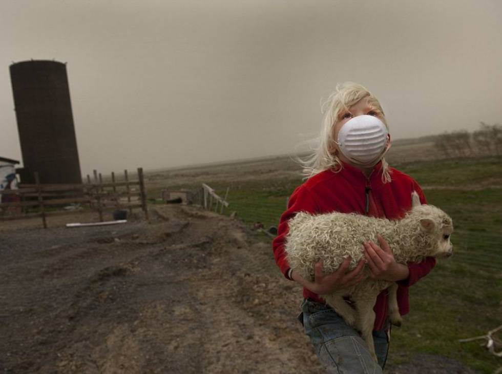 interesting-pictures-rescuing-baby-lamb-iceland