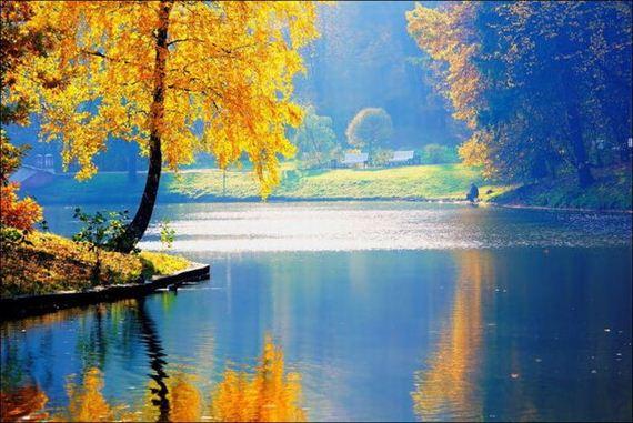 تصاویر رویایی از پاییز