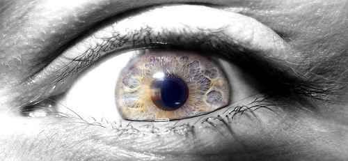 ماکرو تصاویر فوق العاده از چشم (4)