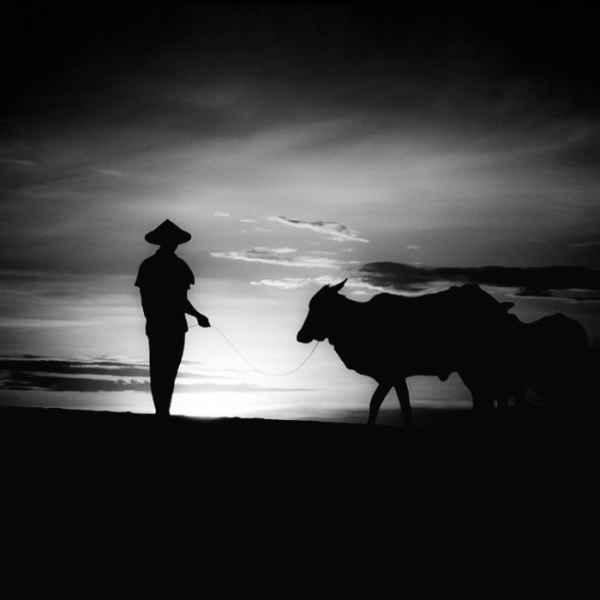 تصاویر سیاه و سفید شگفت آور (12)