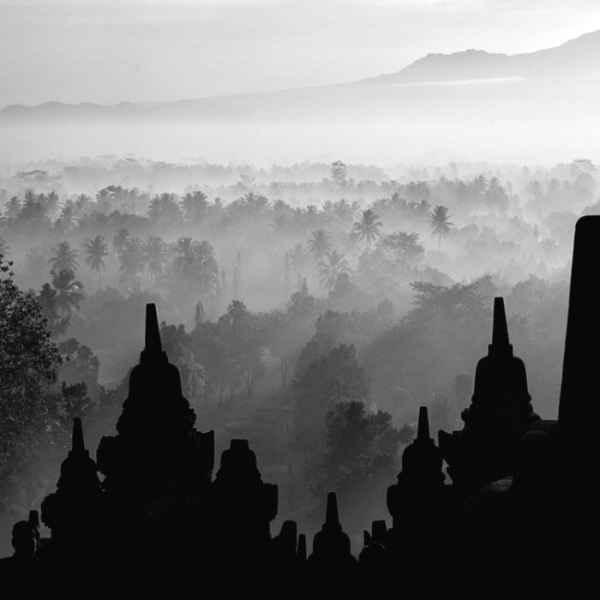 تصاویر سیاه و سفید شگفت آور (6)