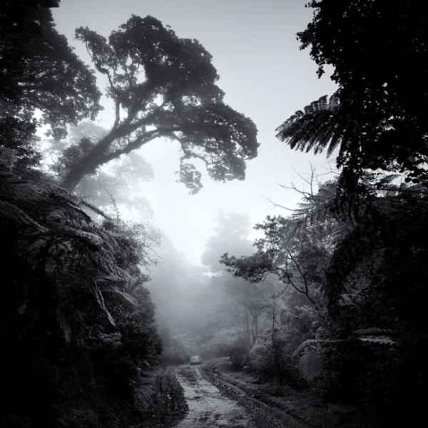 تصاویر سیاه و سفید شگفت آور (سری دوم)
