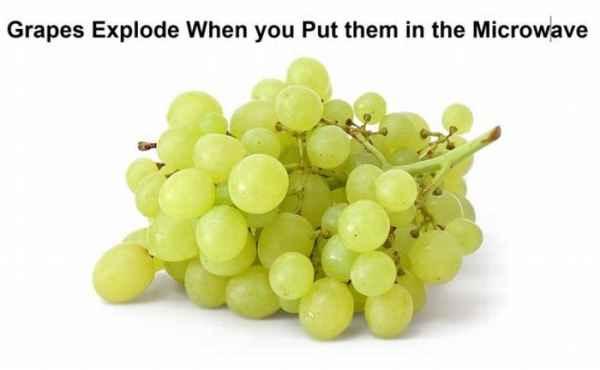 انگور را اگر در مایکروویو بگذارید، منفجر می شود (می ترکد)