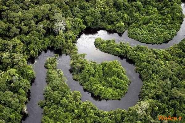 جنگل و رودخانه آمازون
