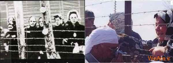 مقایسه جنایات هیتلر و صهیونیست ها (3)