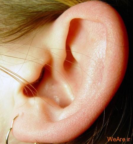 [تصویر:  ear.jpg]