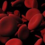 گلبول خونی