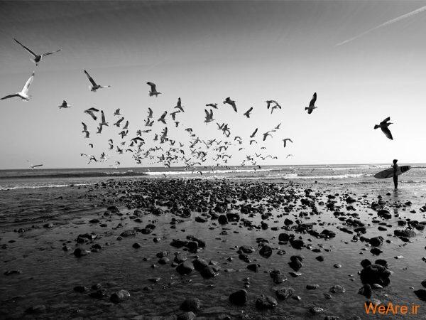 تصاویر سیاه و سفید خارق العاده از نشنال جئوگرافیک (2)