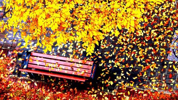 تصاویر پاییز, عکس پاییز (13)
