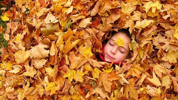 تصاویر پاییز, عکس پاییز (8)