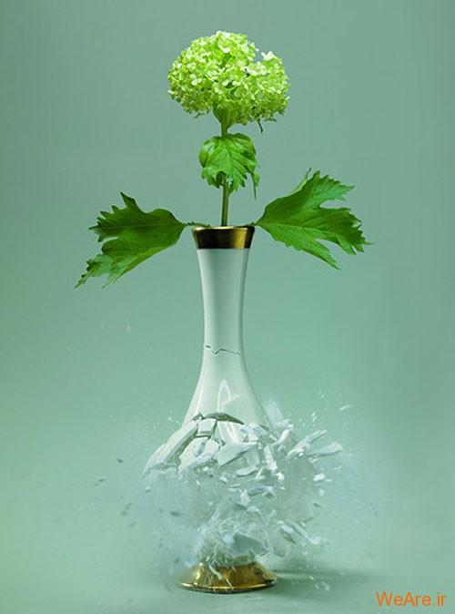عکس  سرعت بالا از شکست گلدان (10)