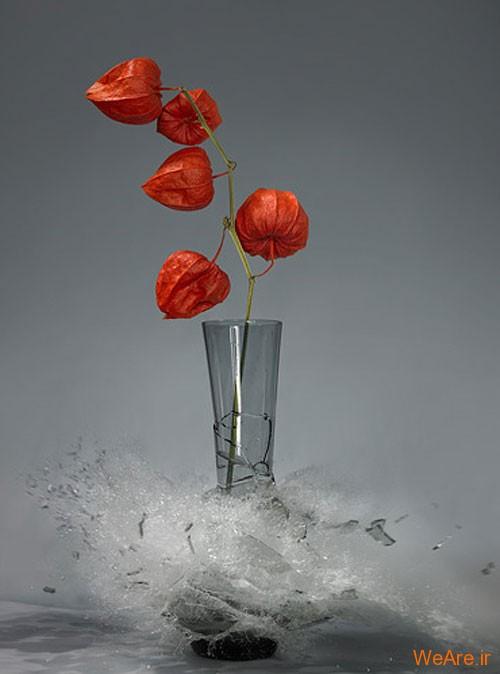 عکس  سرعت بالا از شکست گلدان (9)
