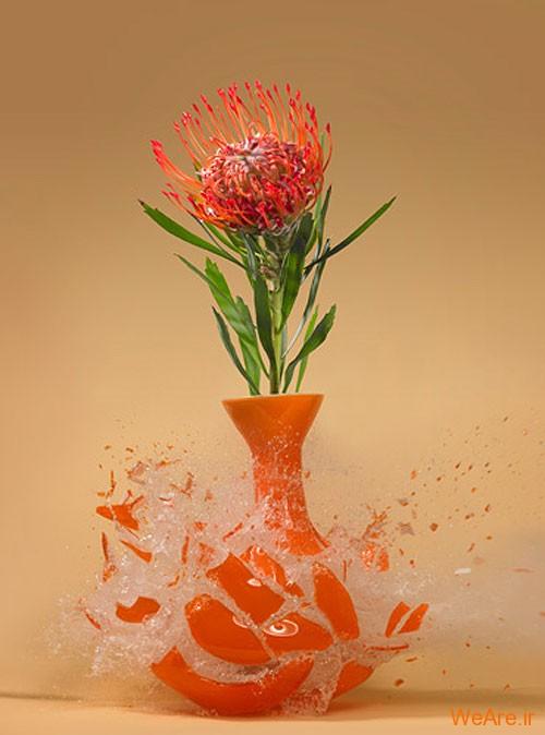 عکس  سرعت بالا از شکست گلدان (8)